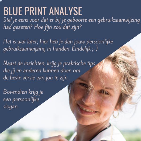 Blue Print praktische persoonlijke handleiding