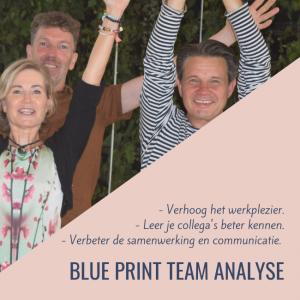 Blue Print Analyse Team