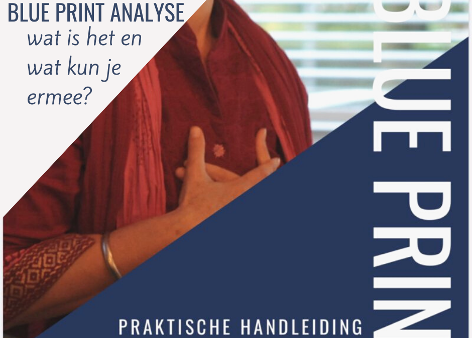 Wat is een Blue print Analyse